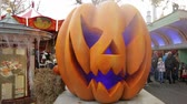 dekor : Lovely pumpkin as decoration for halloween in park. Traditional decoration for Halloween. Halloween backgrounds.