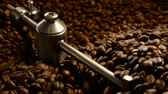 moinho : Coffee beans in the grinder. Fresh Coffee In coffee professional machine. Aroma, background.