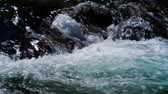 river rapids : Crossing Streams Of Wild River With Stones