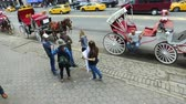 percentagem : People from empty the carriages protesting against the use of horses in New York.