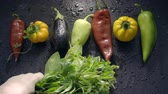 patlıcan : Vegetables, eggplant and pepper in drops of water. Man lays fresh green grass Stok Video