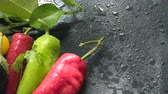 peperoncino rosso : Vegetables, eggplant and pepper on a dark surface in drops of water Filmati Stock