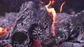 장작 : Close-up Burning logs and coals in a barbecue