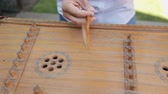 cultura juvenil : Wedding musician learn traditional Ukrainian instrument dulcimer