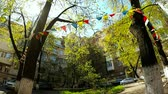 atenção : Multi-colored flags swing the wind between the trees