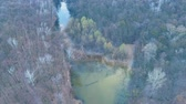 郊外の : Flying over the river in the forest near the field
