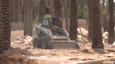 palmen : Palmplantage in Ad Dareyah Historical Town in Riyadh Stockvideo