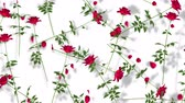 rose garden : Red Roses On White Background. Rendering floral seamless looping.