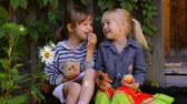 bufê : two girls eating apples, playing dogs toys