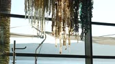 csillár : The chandelier in the restaurant. The interior design of the restaurant. Stock mozgókép