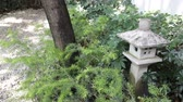 jardim formal : Stone lantern in zen garden, stock footage