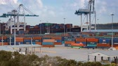 cargo container : Miami, Fl, USA - APRIL 13, 2017: Container terminal with port cranes in Miami, Florida. Stock Footage