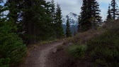 Pacific Crest Trail - Time lapse along the Pacific Crest Trail through Washington Cascades. Stock Footage