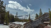 горная вершина : Carson Pass Winter - Afternoon motion control timelapse of winter in High Sierras of California.