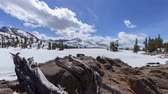 горная вершина : Carson Pass Lake - A motion control time lapse over an alpine lake in the dead of winter.