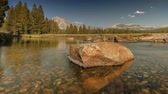 Yosemite Meadow - Crystal clear river in Yosemite National Park.