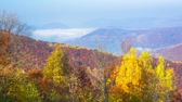 back lit : Autumn. Misty Morning in the Mountains. Fog and Cloud Mountain Valley Landscape. Timelapse. Stock Footage