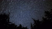 astro photography : 4K astrophotography time lapse with tilt up motion of star trails over alpine pine tree forest in Crystal Lake, California Stock Footage