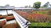терраса : Traditional Japanese garden in Toufuku-ji in Kyoto, Japan -180 tracking pan left shot-