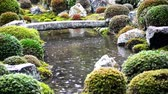 сентиментальный : A pond at traditional Japanese garden in the rain in Toufuku-ji in Kyoto, Japan Стоковые видеозаписи
