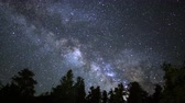 Astrophotography time lapse footage of Milky Way galaxy rising over Ancient Bristlecone Pine Trees through dawn in White Mountain, California -Close Up-