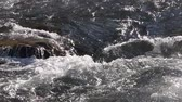 back lit : Water flowing on the stony course, Ursul River, Altai, Russia Stock Footage