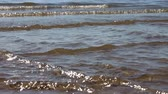 reservoir : Waves in the river in the back lit, natural background, Ob reservoir, Russia