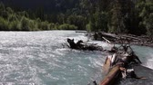 основной момент : Kucherla River flowing among the Altai Mountains, Russia