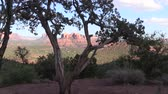 beauty in nature : Cathedral Rock Landscape Sedona Arizona