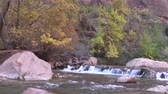 montanha : Virgin River Waterfall, Zion N.P. in Fall Stock Footage