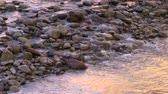 beauty in nature : Tranquil Stream Flowing over Rocks in the Evening Stock Footage