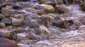 beauty in nature : Stream Flowing over Rocks