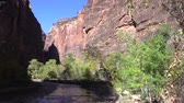 bakire : Virgin River Zion National Park in Fall Stok Video
