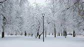 ławka : Beautiful snow-covered city park in winter