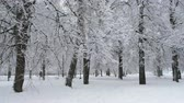 chroupat : Beautiful snow-covered city park in winter