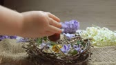egg painted : Childs hand puts festive colored egg in in the Easter nest
