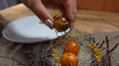 codorna : Female hand takes quail eggs from a white plate and puts them in the Easter nest Vídeos
