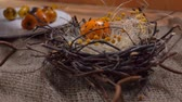 codorna : Festive Easter table setting: Yellow colored quail eggs are laid in the Easter nest