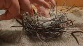 codorna : Womens hands collect a nest of twigs and sisal for a festive table setting for the Easter table: