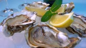 Open oysters on a white plate with ice and lemon. Very close up