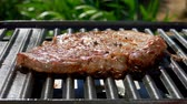 biber tanesi : Smoke rises above the steak on a hot grill. Panoramic camera movement.