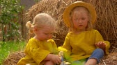 Two little girls eat apples from a basket while sitting on a haystack Стоковые видеозаписи