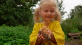Little girl in a linen shirt holds in his hands a little chicken Стоковые видеозаписи