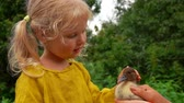 Charming blond farm girl gently stroking a little duckling on the head