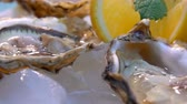 comestíveis : Open oysters on a white plate with ice and lemon. Very close up
