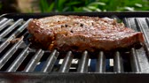перчинка : Smoke rises above the steak on a hot grill. Panoramic camera movement.