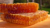 melado : Sweet honeycombs full of honey lie on a wooden board in the fresh air on a sunny day Stock Footage