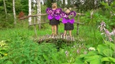 borboletas : Happy girls in purple butterfly costumes play on the wooden bridge. Fairytale story