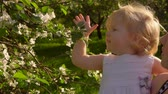 ensemble : Little charming girl in a white dress in her mothers arms sniffs flowers on an apple tree