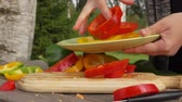 ringen : Female hand puts sliced colored peppers on a plate in the fresh air Stockvideo